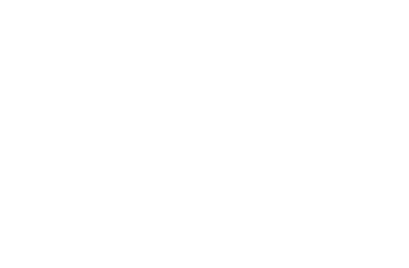 Joel Blom